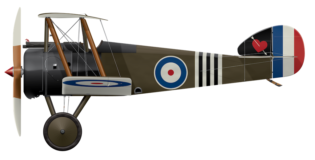 Sopwith Camel B6313 - 6-1918 '3 Stripe' - Side Profile View