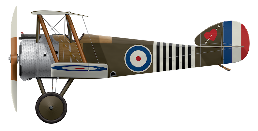 Sopwith Camel B6313 - October 1918 - '6-Stripe'