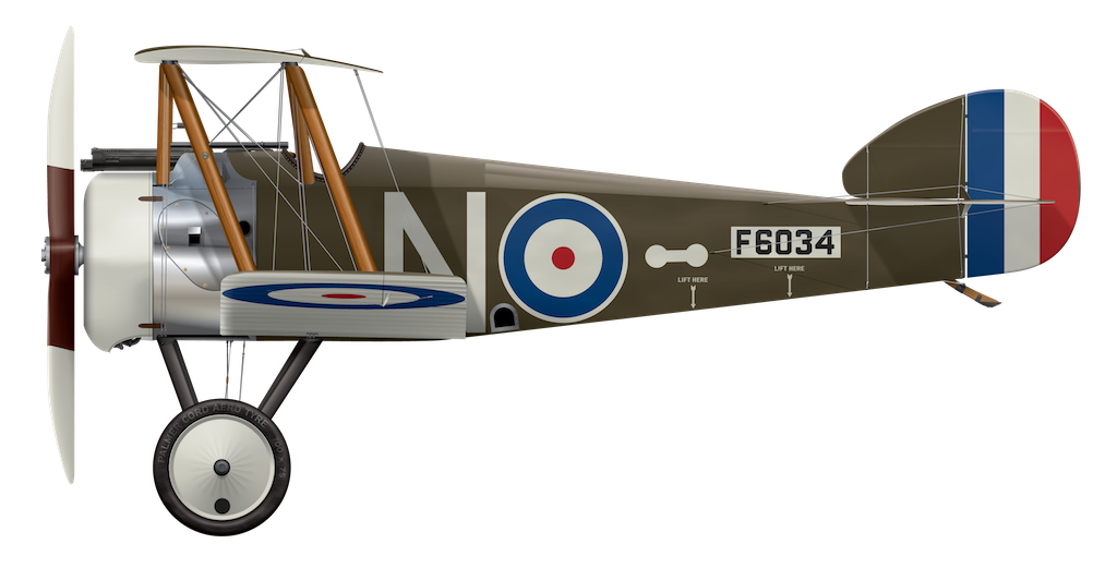 Sopwith Camel F6034 - Side Profile View